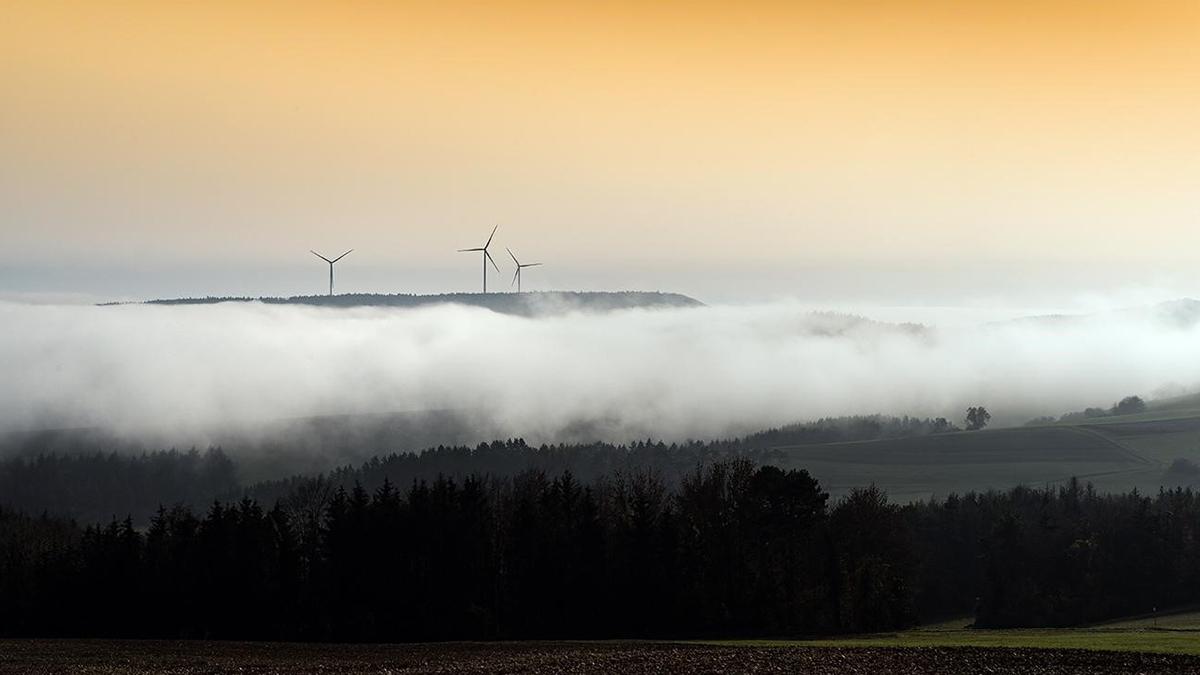 Dorothea Wehinger - Klimaschutz